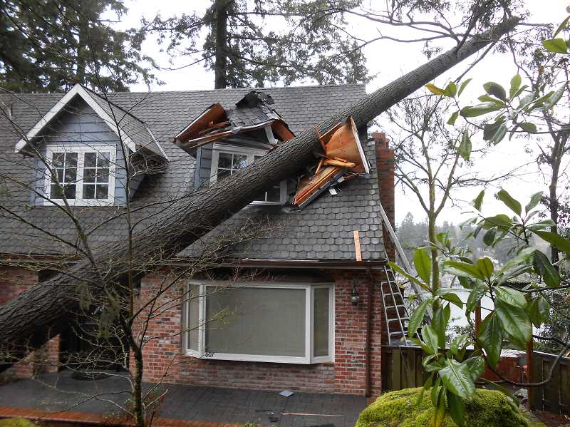 Pamplin media group fallen trees block traffic damage house by review photo cliff newell an upstairs bedroom was damaged by a tree falling on a home on middlecrest road during the high winds that occurred last spiritdancerdesigns Gallery