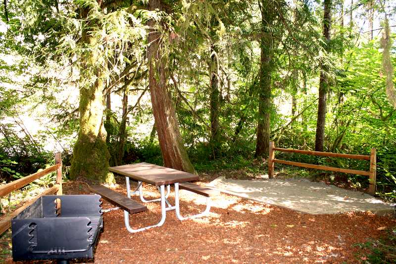 by: PEGGY SAVAGE - One of many beautiful camp spots at the Cedar Grove Recreation Site in the Molalla River Corridor
