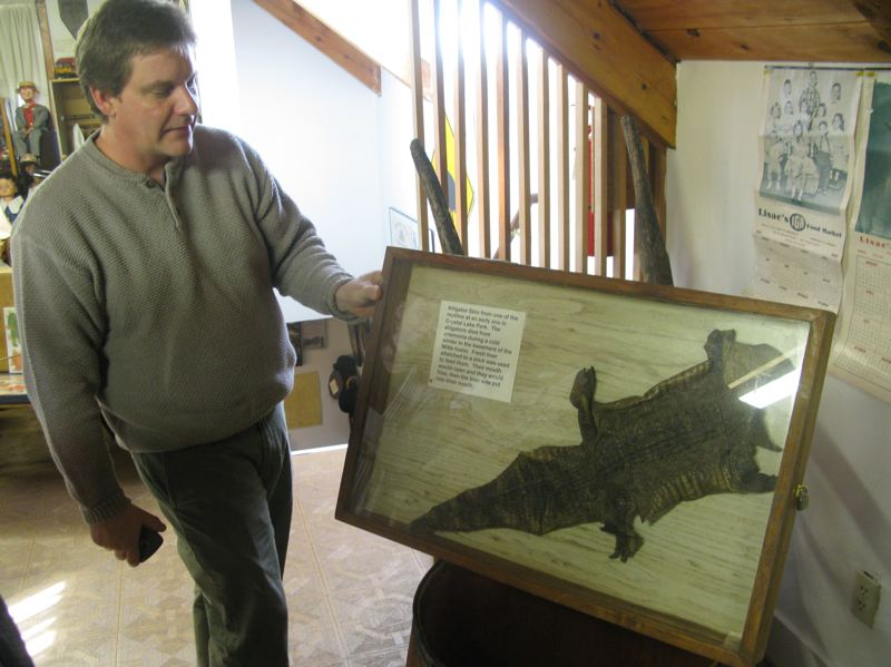 by: FILE PHOTO: RAYMOND RENDLEMAN - Greg 'Frank' Hemer of the Milwaukie Historical Society  looks forward to help from consultants to organize exhibits at the Milwaukie Museum, including this alligator skin left over from the citys defunct amusement park.