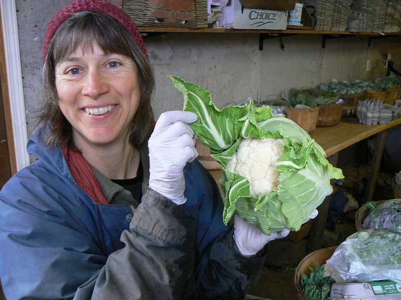 by: COURTESY PHOTO - Polly Gottesman of Pumpkin Ridge Gardens shows off a bunch of cauliflower she recently harvested.