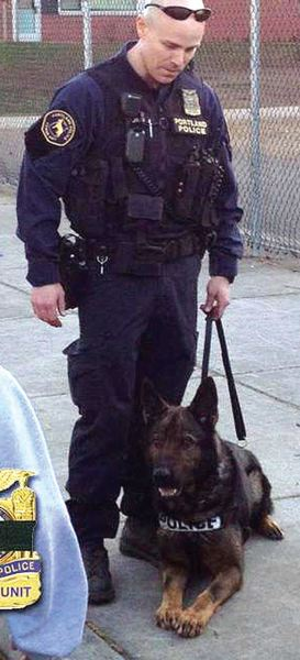 by: COURTESY OF THE PORTLAND POLICE BUREAU - Portland Police Officer Jeff Dorn and his K-9 partner Mick. Dorn was wounded and Mick was killed in an April 16 shootout with a burglary suspect.