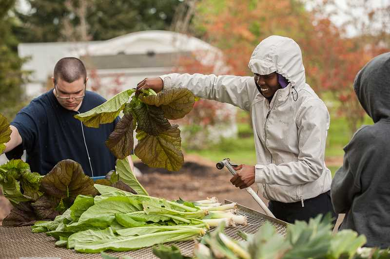 Art Tech senior Alexis Farrington works with junior Tabi Deutcher at the CREST organic farm in preparation for the weekly pickup of produce by the farm's CSA members.