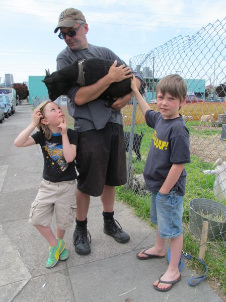 by: COURTESY OF DICK TRTEK - Christopher Frankonis holds Winter, who has taken a liking to Tabor Moro, 6, left.  His brother, Creston, 8, says he likes coming to see the goats in the Belmont area, instead of having to drive out to a farm to visit them.