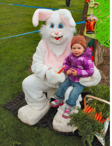 by: DAVID F. ASHTON - Corinne Lax sits on the Easter Bunnys lap.
