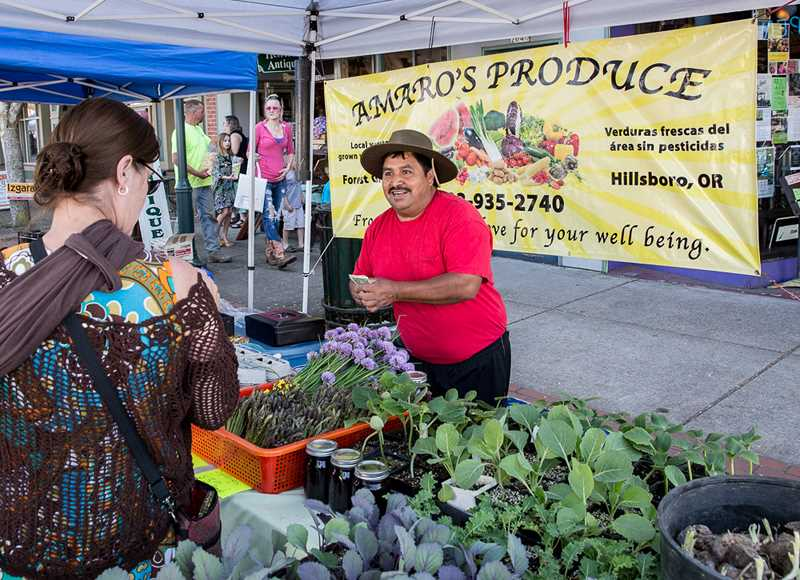 by: COURTESY PHOTOS: RICK PAULSON - Sabino Amaro of Hillsboro-based Amaros Produce helps a customer with a purchase during last weeks opening day of the Forest Grove Farmers Market.