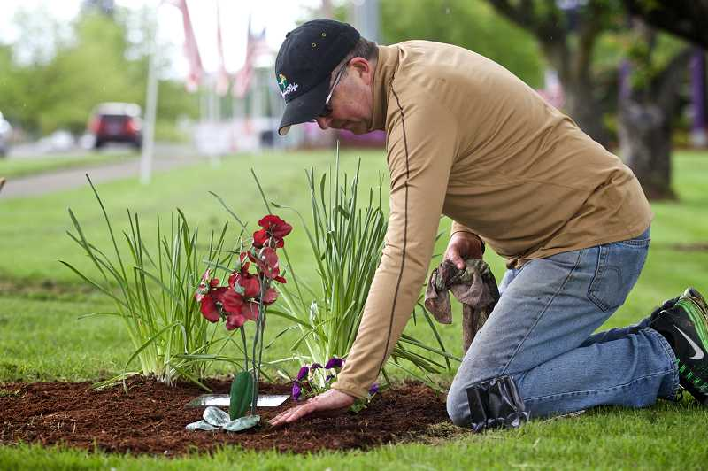 by: TIMES PHOTO: JAIME VALDEZ - Parent-volunteer Michael Hansen wipes away debris around a plaque that memorializes Sunset High School students Cathy Zubryk and Curran Phillips, who died in 1989.