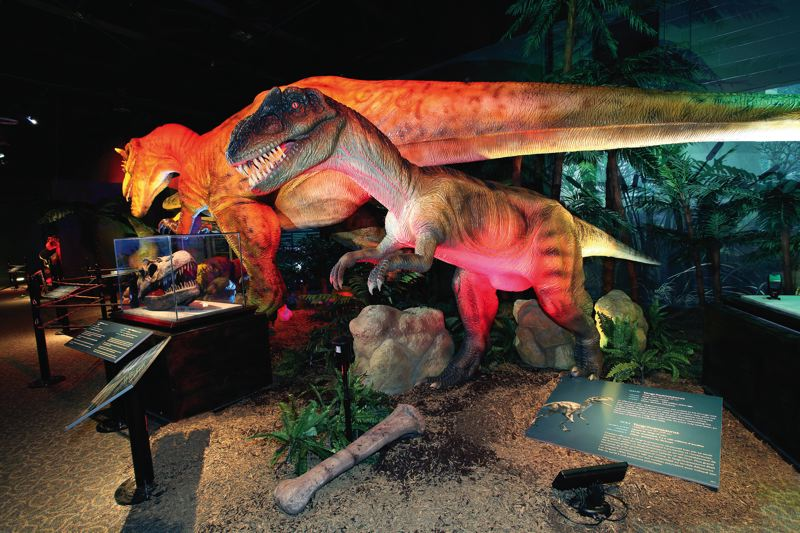 by: PHOTOS COURTESY OF OMSI - OMSIs Dinosaurs Unearthed exhibit brings to life dinosaurs, animatonically, including the Yangchuanosaurus and Allosaurus (right).
