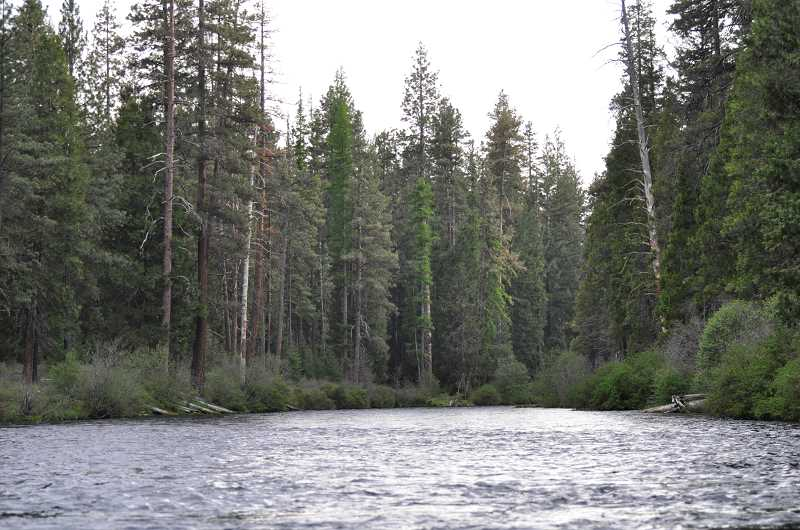 by: JESSICA NOACK - The Metolius River, above Bridge 99, is wide and swift. Below the bridge, where fisherman Isamu Furuichi, 62, of Corvallis, slipped and fell into the water, the river is more treacherous. Furuichi's body was found Tuesday 2.3 miles downriver from where he fell in on Monday, May 26.