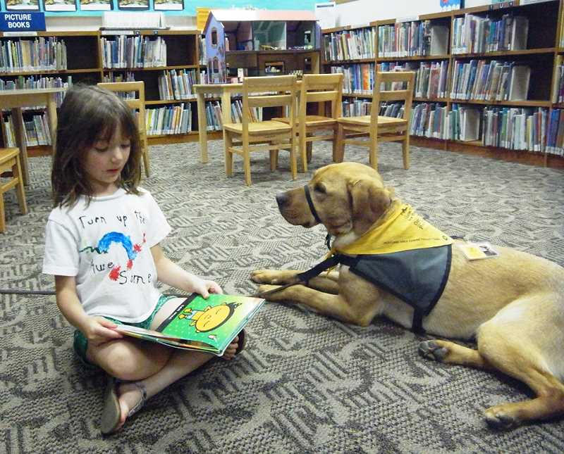 by: SUBMITTED PHOTO: KATHY LOTER - Nixon the yellow Lab gets in his first practice for the new Read to the Dogs program at the Lake Oswego Public Library. Helping him out is 5-year-old Kiera Kuehn.