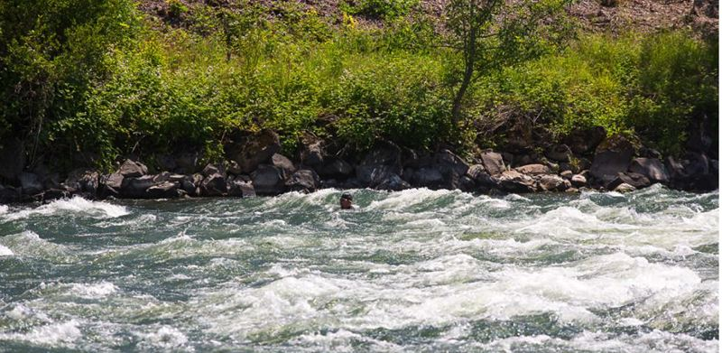 by: CONTRIBUTED PHOTO - That tiny dot in the center of the photo-- near the opposite bank-- is Dean Hall, a Gresham therapist and double-cancer patient, who swam through rapids and perilous conditions on the first days of his effort to swim the length of the Willamette River.