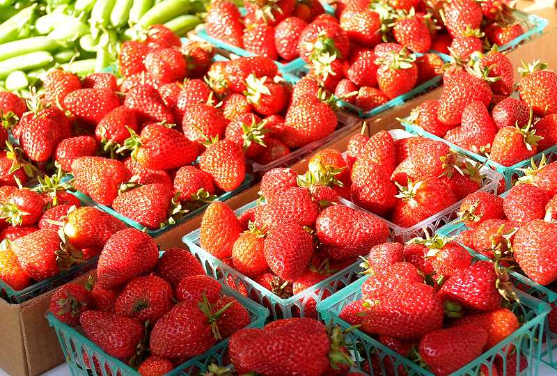 by: TIDINGS PHOTO: VERN UYETAKE - Strawberries were a hot item at last weeks farmers market.