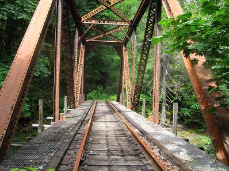 by: PHOTO BY ROB MANNING, COURTESY OF OPB  - This rail crossing goes through the proposed Salmonberry Trail in the Coast Range