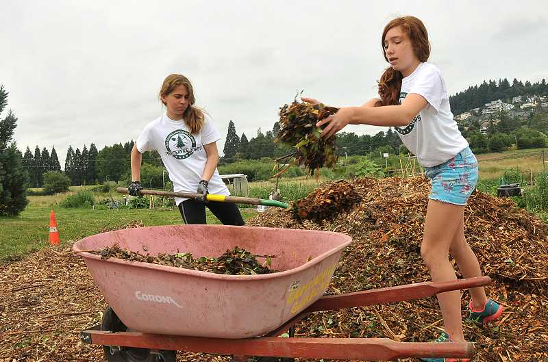by: REVIEW PHOTO: VERN UYETAKE - Emily Bell (right), an eighth-grader at Lakeridge Junior High, works with her fellow Teen Service Corps members to clear weeds at Luscher Farm.