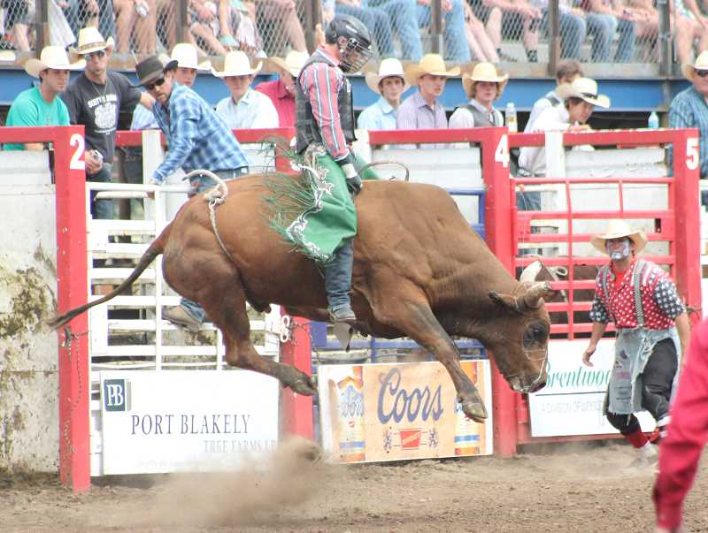 by: JIM BESEDA/MOLALLA PIONEER - Jeff Askey of Matin, Tenn., had a good ride going Friday afternoon ... until he fell off.