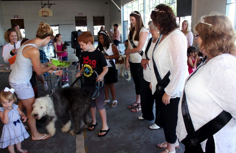 by: POST PHOTO: KYLIE WRAY - Bubba the Old English Sheepdog was presented with an award for being the softest pet.