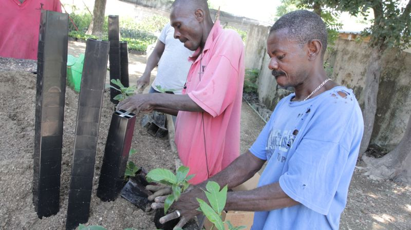 by: SUBMITTED PHOTO - Workers at a tree nursery in Port au Prince, Haiti, use pots donated by Milwaukie-based Anderson Die & Manufacturing to help battle deforestation.