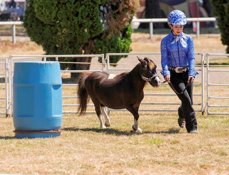 by: RAY HUGHEY - Alexis Knight, of Molalla, takes her mini horse, Timmy, through his paces in hand trail competition at the 4-H Horse Show at the Clackamas Event Center.