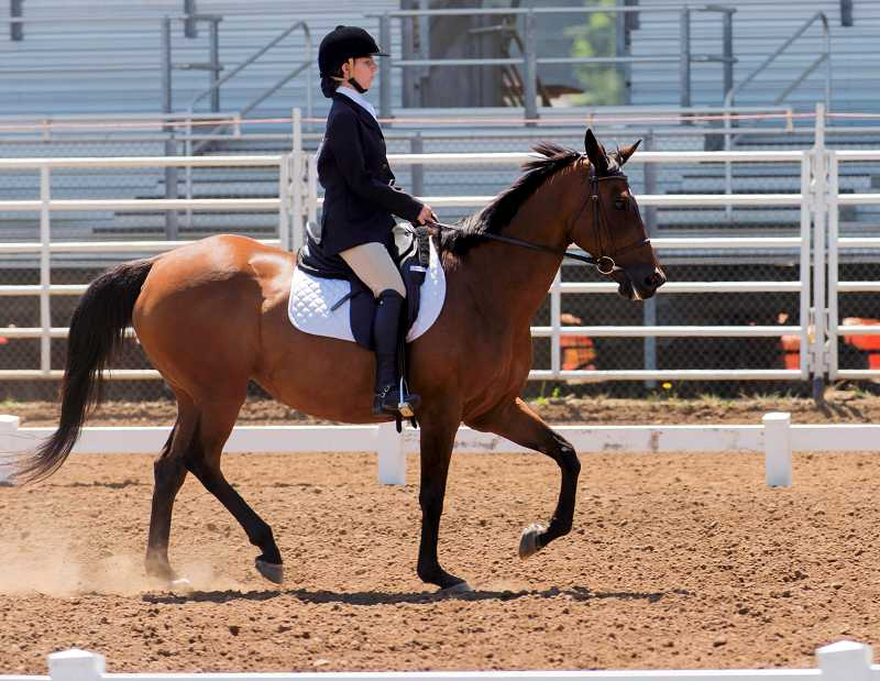 Alison Weatherly, of Wilsonville, puts Willow, her 14-year-old thoroughbred through his dressage paces.