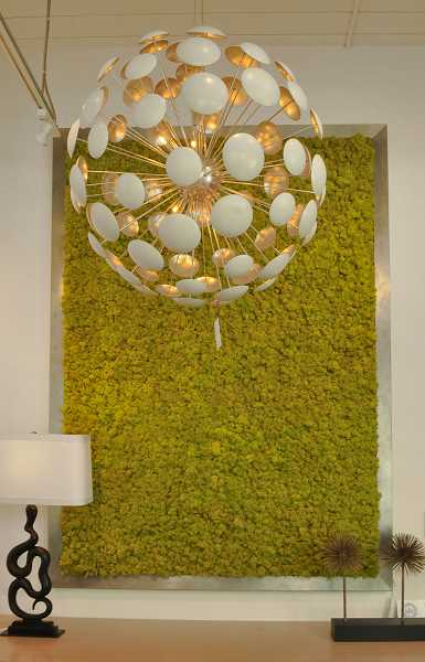 This giant moss plaque makes an impressive statement on a wall.