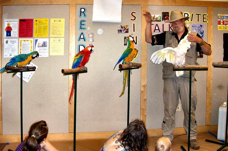 by: RITA A. LEONARD - Karl Anderson, The Bird Man, displays a collection of colorful birds, as he explains at the Sellwood-Moreland Branch Library about these birds - their care and their capabilities.