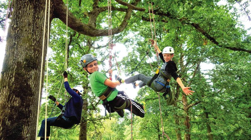 Photo Credit: SUBMITTED PHOTOS - Two young boys frolic in the treetops during a one-day tree-climbing course in Oregon City.