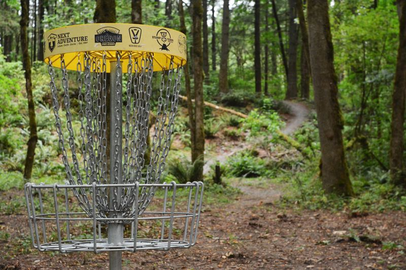 Photo Credit: JOHN WILLIAM HOWARD - A hill looms behind the basket marking the fifth hole at the McCormick Park Disc Golf Course in St. Helens. Coming down the hill presents a birdie possibility, but get ready to make up for it on a difficult hole number six.