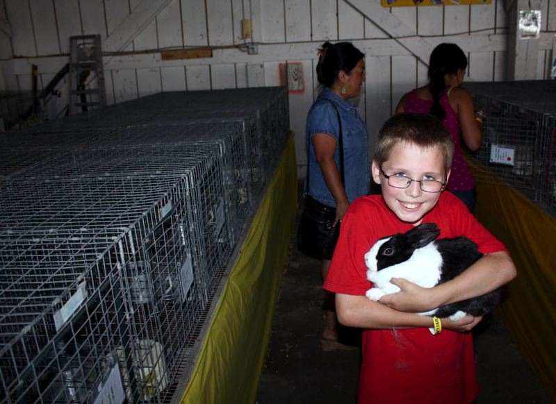 Photo Credit: POST PHOTO: KYLIE WRAY - Daniel Johnson, 9, poses with his prized Dutch rabbit.