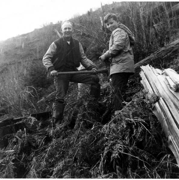 Photo Credit: COURTESY PHOTO: MAXINE LEACH - This photo from 1959 shows a Boy Scout and parent helper from Portland replanting an area of the Tillamook Burn just past the summit of Highway 6 near the north fork of the Wilson River.