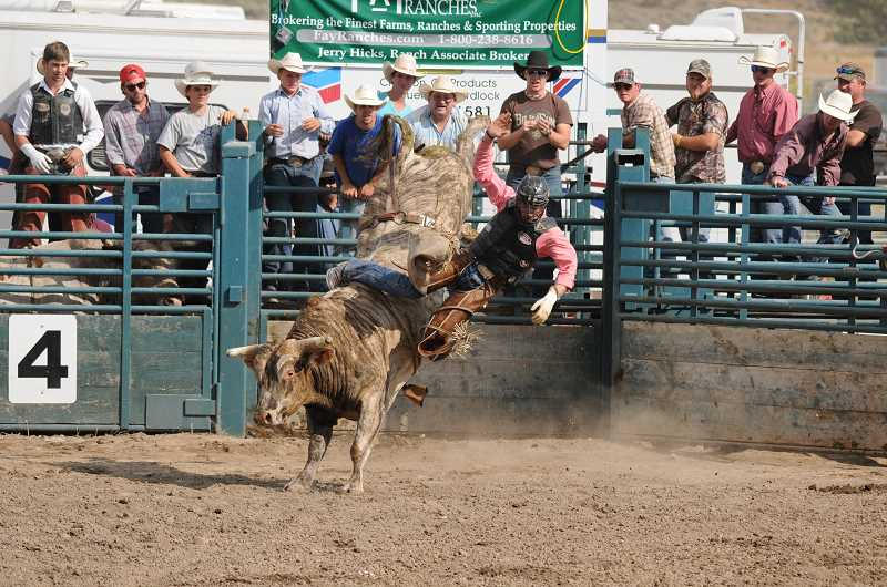 Photo Credit: LON AUSTIN - Bull riding is always a popular event at the Paulina Rodeo, held annually on Labor Day Weekend.