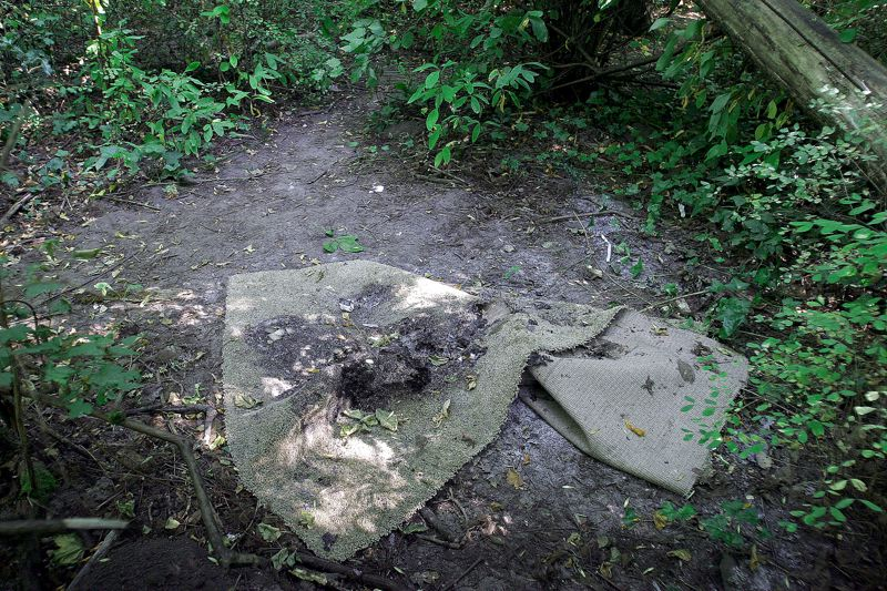 Photo Credit: OUTLOOK PHOTO: JIM CLARK - A piece of burned carpet, surrounded by trees and foliage, lies on the ground in Fairview Woods Wetlands Park.
