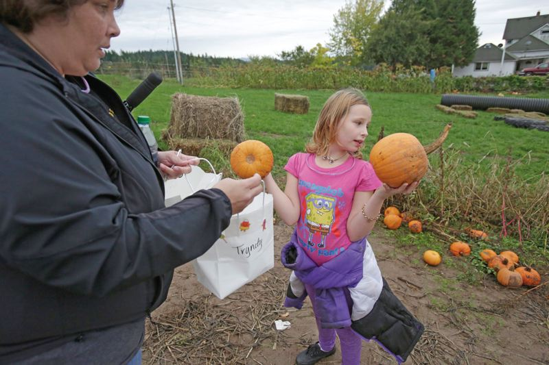 Photo Credit: TIMES PHOTO: JONATHAN HOUSE - Trynity Kilburn grabs a couple of pumpkins at Plumper Pumpkin Patch to put in a bag held by her Big Sister Tracy Preston.