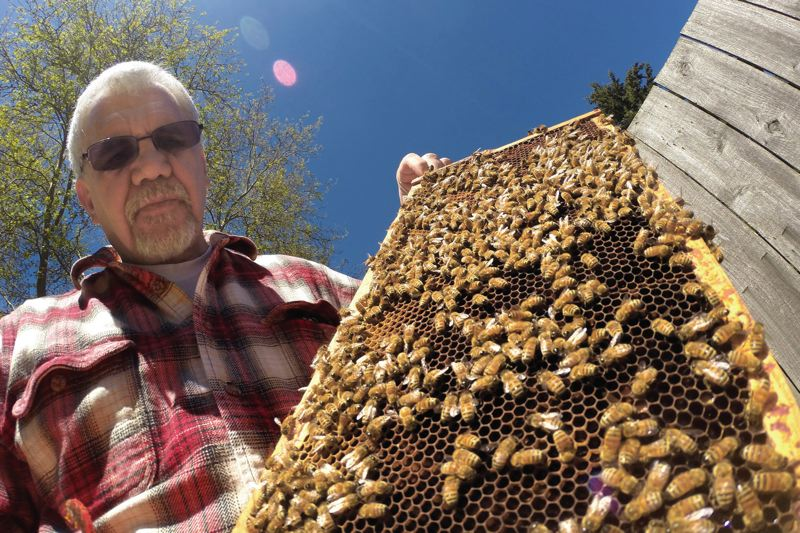 TRIBUNE PHOTO: JAIME VALDEZ - Despite the ongoing problem of illegally-imported honey, Oregons bee industry continues to grow said  Paul Andersen, president of the Oregon State Beekeepers Association.