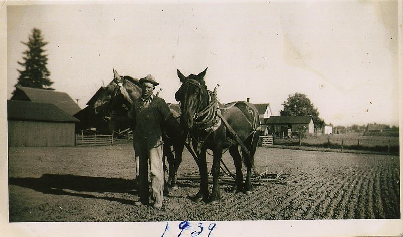 Henry Taghon always had a love for his family farm and was very pleased when his grandsons decided to continue the tradition. Hes pictured here in 1939 with his horses.