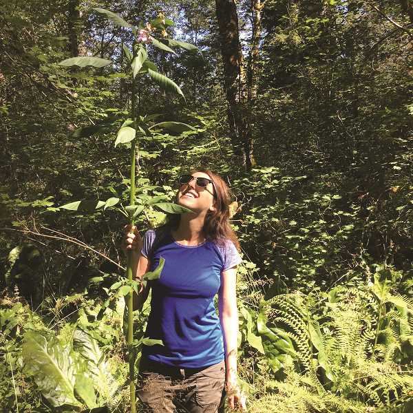 CONTRIBUTED PHOTO - Corinne Handelman of the Sandy River Basin Watershed Council shows the height of an invasive policemans helmet plant.