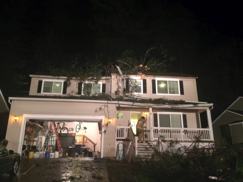 PHOTO COURTESY OF COLUMBIA RIVER FIRE AND RESCUE - A downed pine tree fell on the home of Dan and Mary West on Tuesday, Nov. 17. Two people were upstairs in the home when the tree fell, but no serious injuries were reported.
