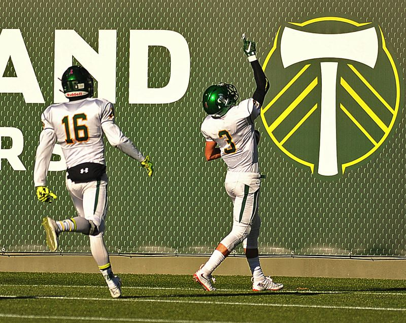 REVIEW PHOTO: VERN UYETAKE - West Linn's Connor Berggren points skyward after scoring a touchdown during his team's 51-7 win over Sherwood in Saturday's Class 6A state semifinals at Providence Park.