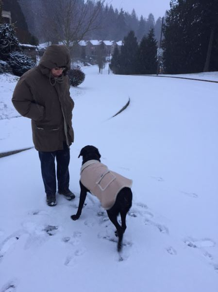 CONTRIBUTED PHOTO - Curt Mettler and his dog Alagna out for an Sunday walk on Southeast Butler Road in Gresham.