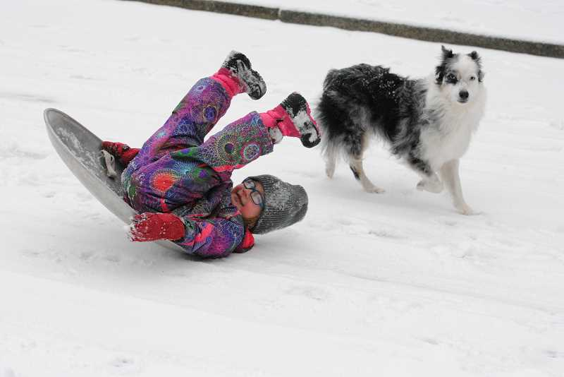 PHOTO COURTESY SARAH MORRIS -  Lucy Morris takes a tumble under the watchful eye of her dog Bess.