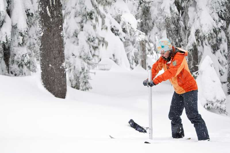 POST PHOTO: KYLIE WRAY - Hydrologist Julie Koeberle manually measures snowpack at the the agencys Mount Hood snow survey site on Tuesday, Dec. 29.