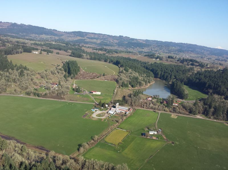 TRIBUNE PHOTO: JENNIFER ANDERSON - The new Tour DeVine by Heli provides a panoramic view of the North Willamette Valley.