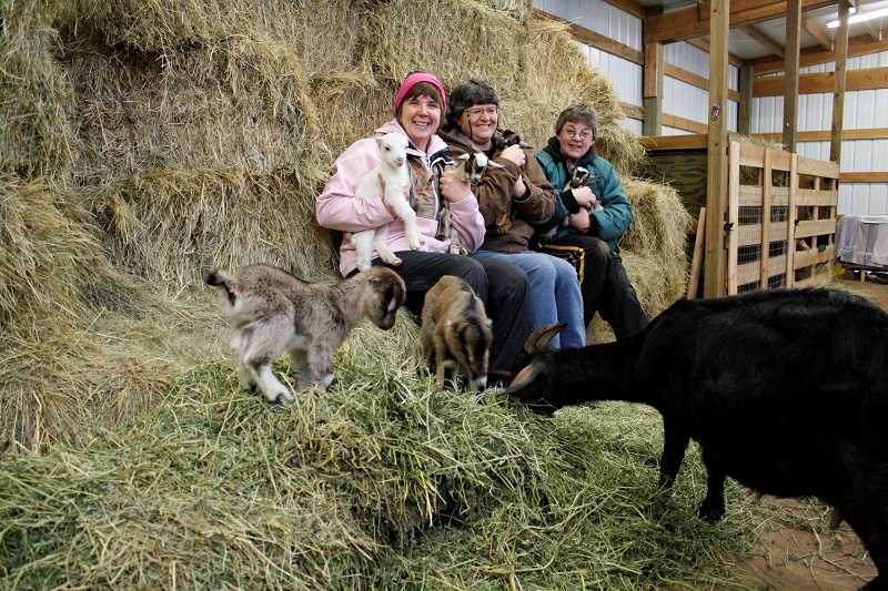 POST PHOTO: ELIZABETH KELLAR - Melody Ennis, Sheila Hough and Kris Fitzgerald pose with the six kids that were born last week to Ennis and Fitzgeralds goat Abby. Six is considered a high number of kids.