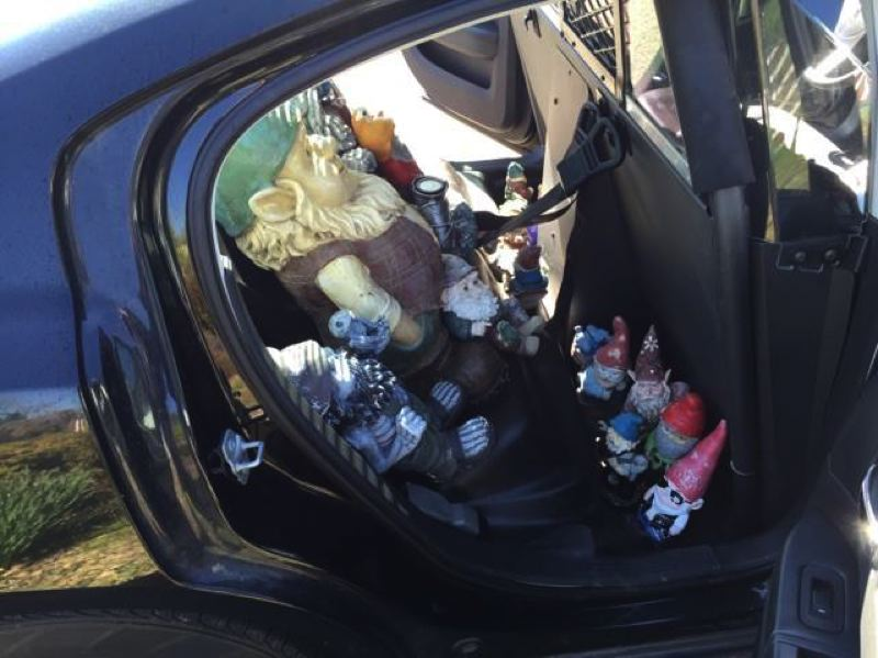 SCAPPOOSE POLICE DEPARTMENT PHOTO - Several garden gnomes were recovered by Scappoose police after a woman spotted her statues in a Facebook post.