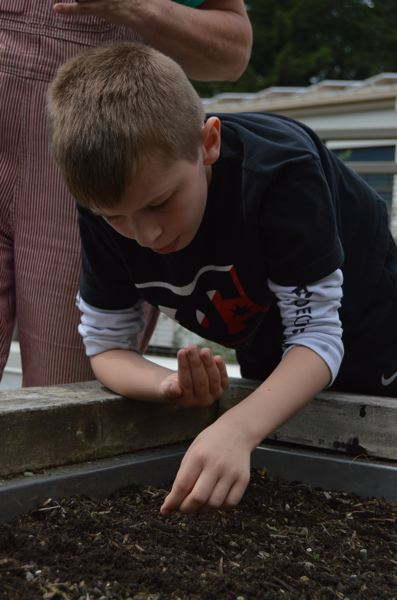 SPOTLIGHT PHOTO: NICOLE THILL - Fourth-grader Devon Estirline carefully sows onion seeds into a small trench that was dug into to the soil Wednesday, May 4. Estirline and his classmates helped water the seeds after they were planted.