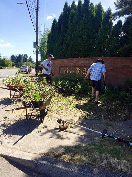 CONTRIBUTED PHOTO: DEBBIE ERICKSON - A group of 20 neighbors worked for five hours over the weekend to cleanup the entryway to Alpine Ridge.