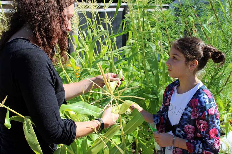 REVIEW PHOTO: JILLIAN DALEY - Volunteer parent Nancy Wakefield shows second-grader Emri Ahdab how to harvest corn, peeling back the husk and silk.