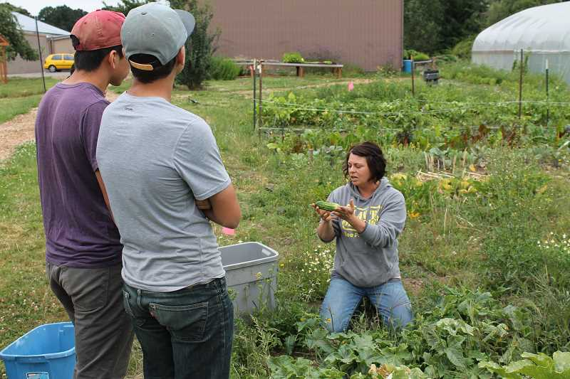 TIDINGS FILE PHOTO - The West Linn Eco-School Network will work closely with West Linn-Wilsonvilles CREST (Center for Research in Environmental Sciences and Technologies), like with the school districts farm-to-school program pictured here.