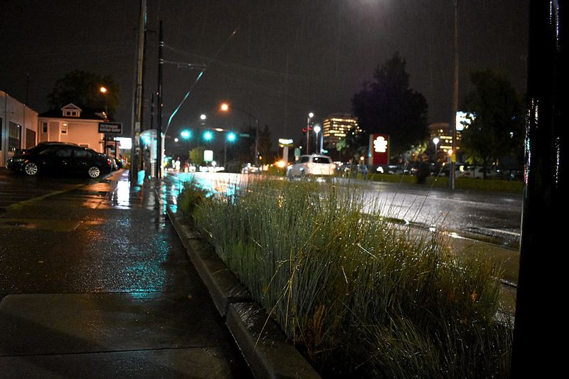 TRIBUNE PHOTO: JOSEPH GALLIVAN - A stormwater landscape swale or bioswale  at Northeast Weidler Street and First Avenue on Thursday night was trying to absord heavy runoff and prevent sewage entering the Willamette River.