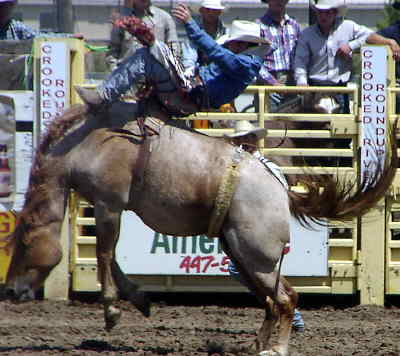 by: CENTRAL OREGONIAN - Tyler Barnes is one of several local cowboys who will be competing at this year's Columbia River ProRodeo Circuit Finals in Redmond.