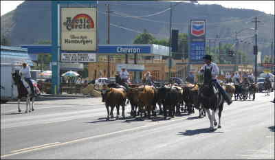 by: CENTRAL OREGONIAN - The cattle drive makes its way down Third Street in 2004, the last time the cattle drive happened. This year, the event is slated to start at 10th and Main Street, and make its way down Main Street to the Crook County Fairgrounds.