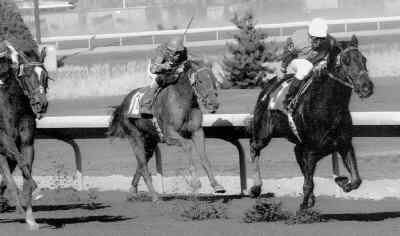 by: COURTESY OF REED PALMER PHOTOGRAPHY - Natraski, right, jockeyed by Jaime Martinez, is one of four horses that trainer Monte Gibson will see to this week at the 2006 IronHorse Races at Crook County Fairgrounds. Above, Natraski, owned at the time by Jack Rhoden, took first place at Portland Meadows on February 26, 2005. Natraski clocked a 1:15.2 in the six-furlong race.